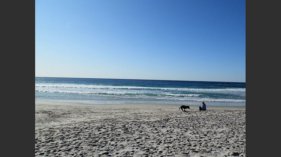 Der Sandstrand <span style=&#34;font-weight: bold;&#34;>Carmel City Beach</span> in <span style=&#34;font-weight: bold;&#34;>Carmel-by-the-Sea </span>in <span style=&#34;font-weight: bold;&#34;>Kalifornien</span> wird vor allem von Hundebesitzern frequentiert.&nbsp; - &copy; By Arzun at English Wikipedia, CC BY 3.0, <a href=&#34;https://commons.wikimedia.org/w/index.php?curid=17915985&#34; target=&#34;_blank&#34;>https://commons.wikimedia.org/w/index.php?curid=17915985</a>&nbsp;